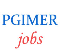 Group-A, B and C Jobs in PGIMER