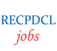 Experienced Professional Jobs in RECPDCL