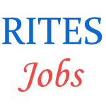 Engineering professionals in Rites
