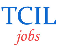 Managers Jobs in TCIL