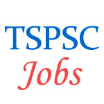 Teachers and Assistant Jobs in Telangana State PSC