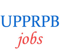 Sub-Inspector Fire Officer Jobs in UP Police