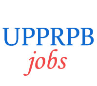 Jail Warder and Constable Horseman Jobs in UP Police