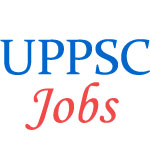 Assistant Teacher (Trained Graduate Grade) Examination by UP PSC