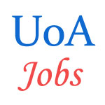 Teaching Jobs in University of Allahabad