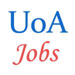 Teaching Jobs in University of Allahabad