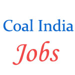 Management Trainees Jobs in Coal India 2017